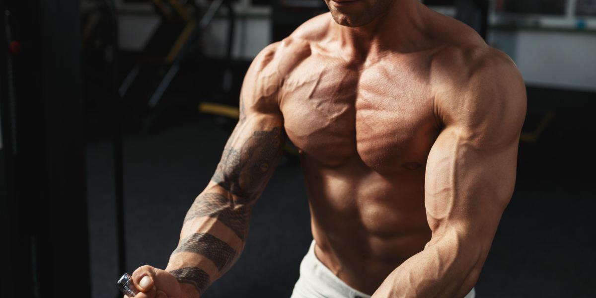 Body Sporcularının Güç ve Kas Artırıcı Antrenman Teknikleri
